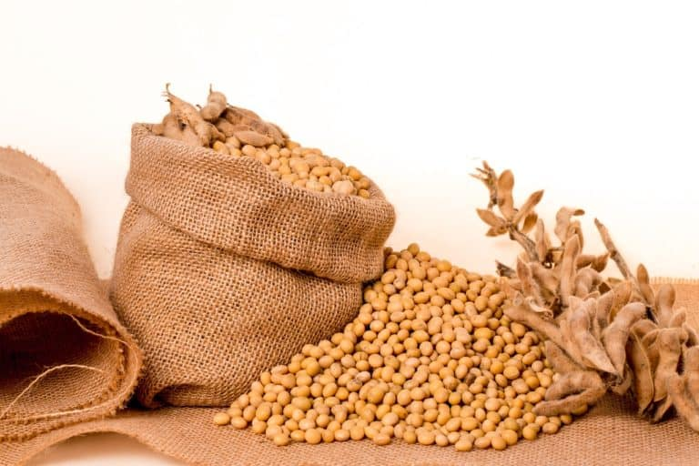 Are Soybeans Really That Healthy?