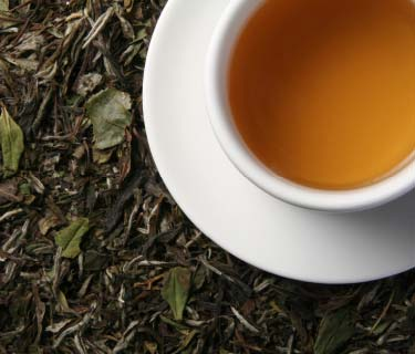 White Tea Health Benefits