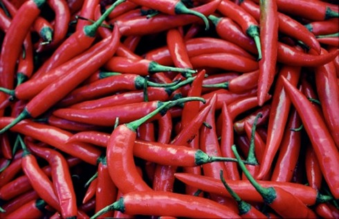 Natural Cancer Killers Include Red Chillis