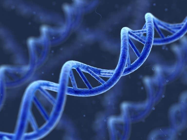 Does Dutasteride (Avodart) Increase Prostate Cancer Risk?