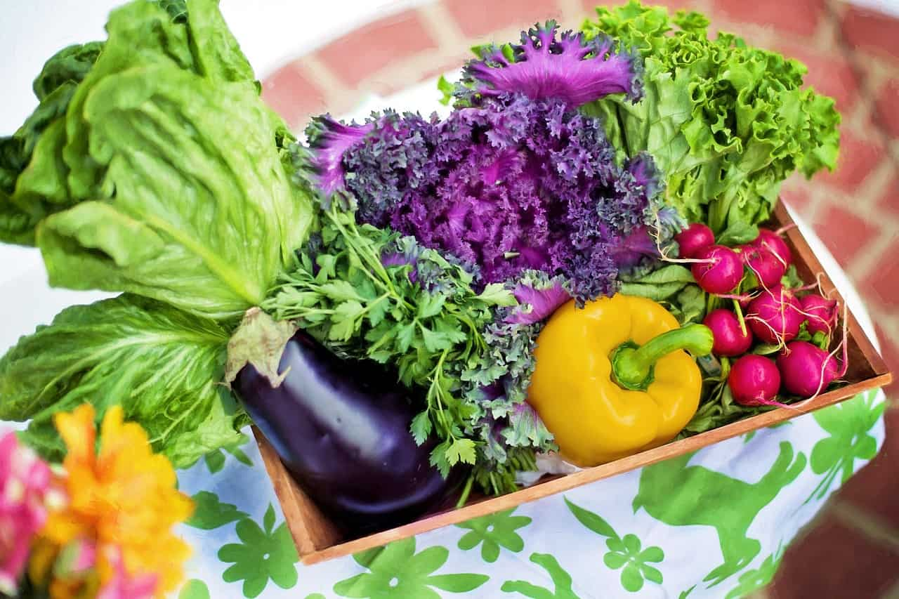 best reasons to eat organic food Can antioxidants fight prostate cancer