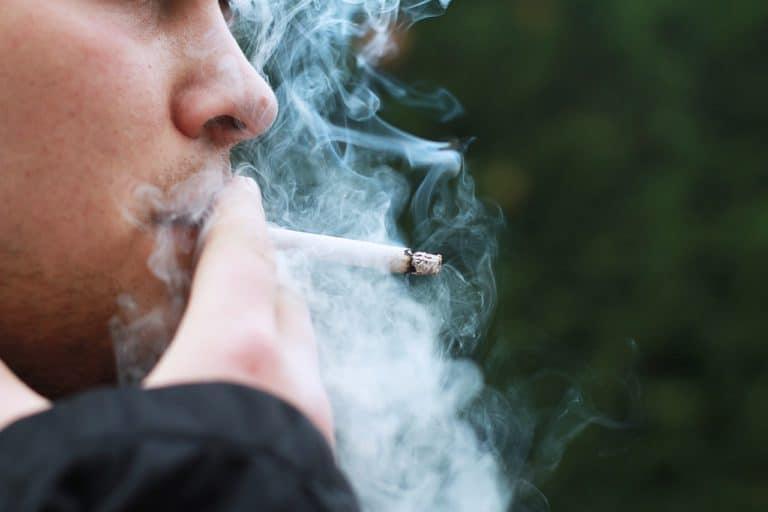 Estrogen May Help Promote Lung Cancer