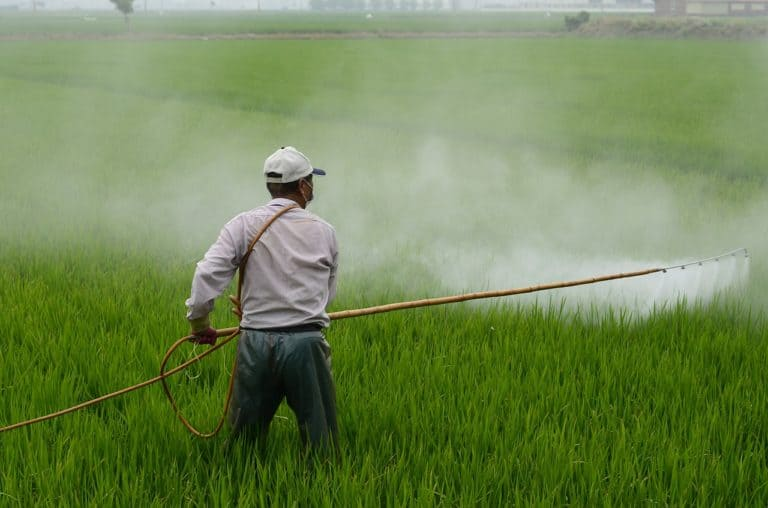 Can Pesticides Cause Prostate Cancer?