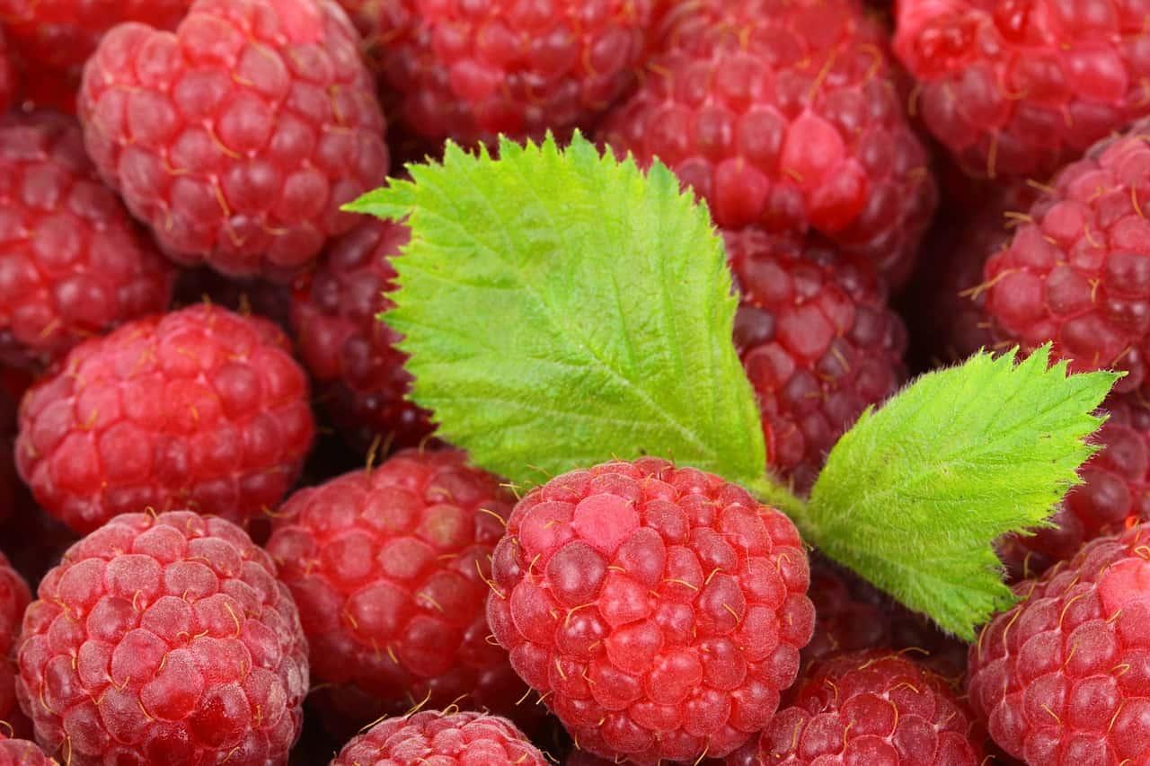 Are Raspberries Good for Men's Health?