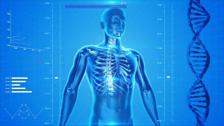 Andropause and Osteoporosis – What's The Link?