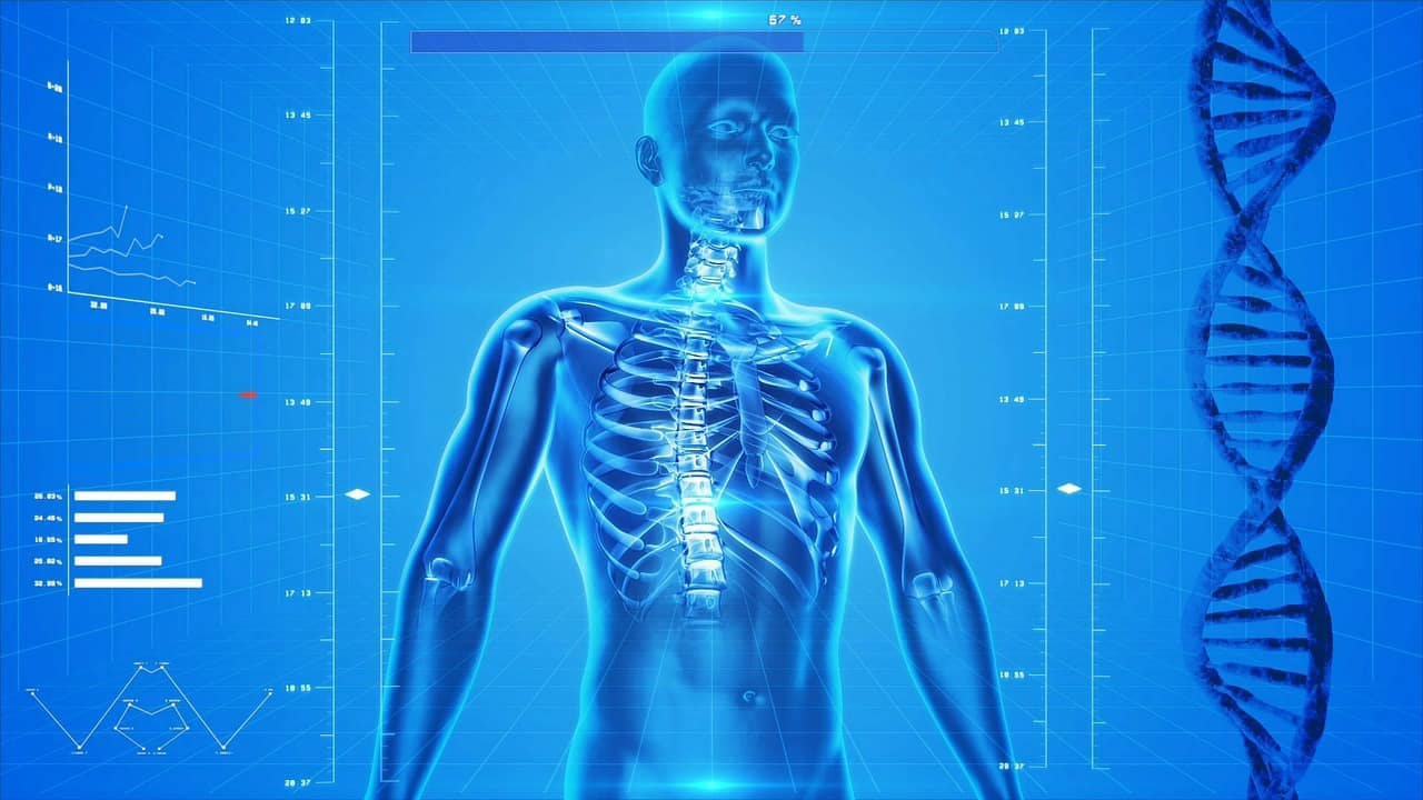 Andropause and osteoporosis