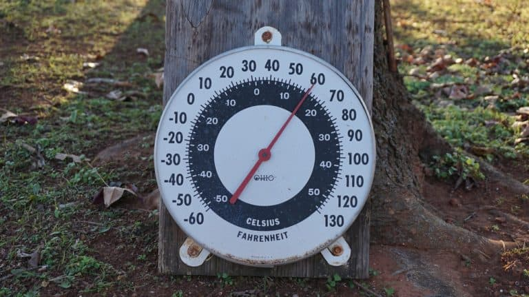 High Summer Temperatures Could Mean More Urinary Tract Infections