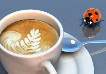 Coffee and prostate cancer risk: it's complicated