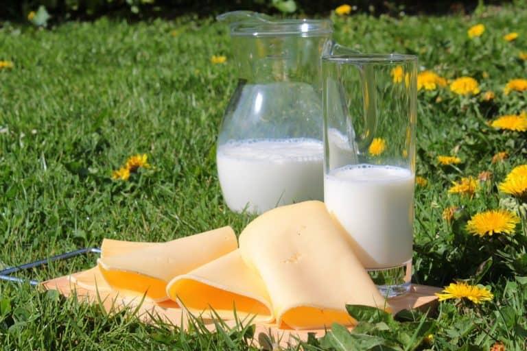 Calcium Supplements Increase Risk of Heart Attack in Men