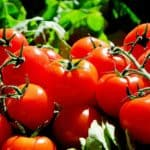 Lycopene Benefits for Black Men in Prostate Cancer Prevention