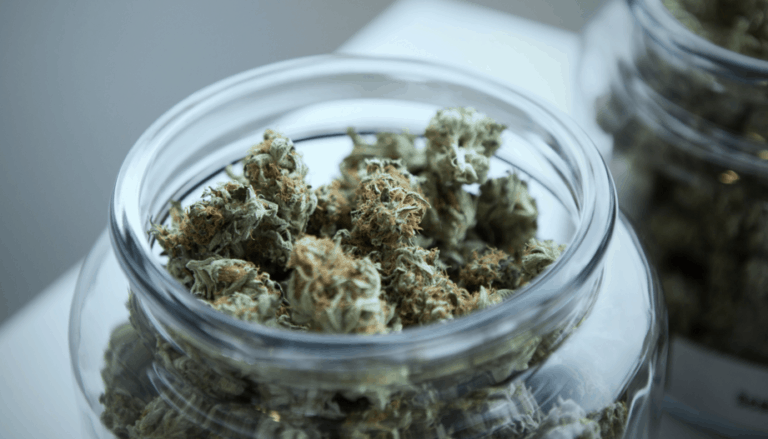 Can Cannabis Oil Cure Prostate Cancer?