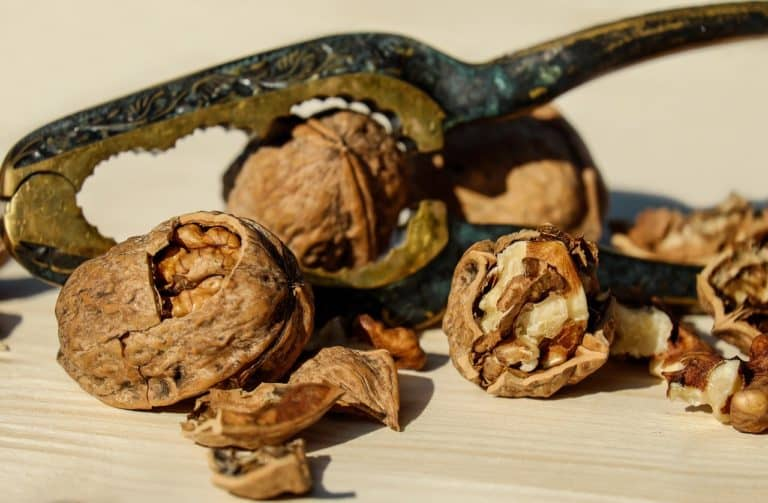 How Can Walnuts Help Prostate Cancer Patients?