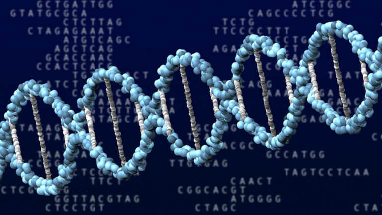 Can A New Genetic Test Predicts Prostate Cancer?