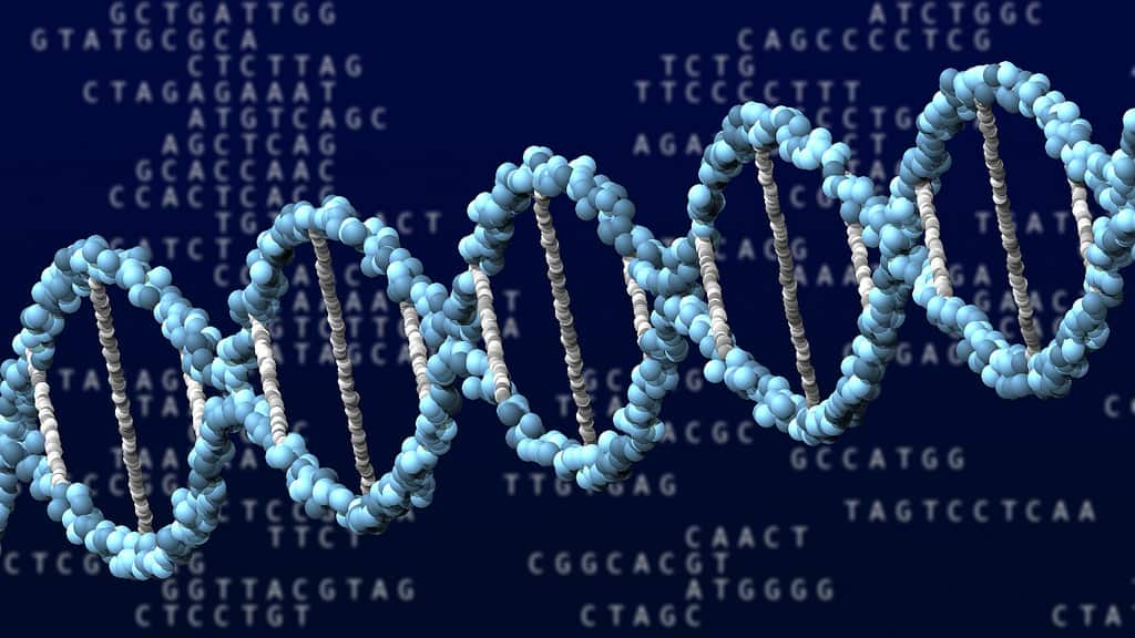 New genetic test predicts prostate cancer Prostate cancer gene test bypasses surgery