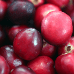 What Are The Men's Health Benefits of Cranberry?