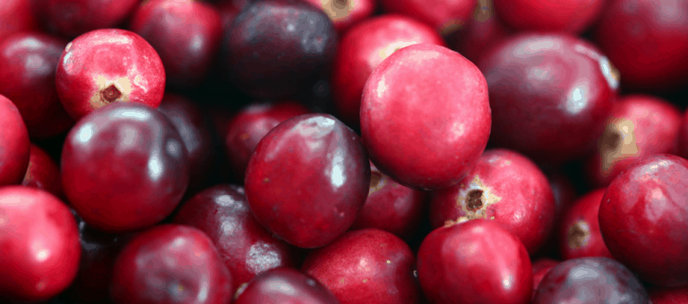 Does Using Cranberry for Prostatitis Treatment Work?