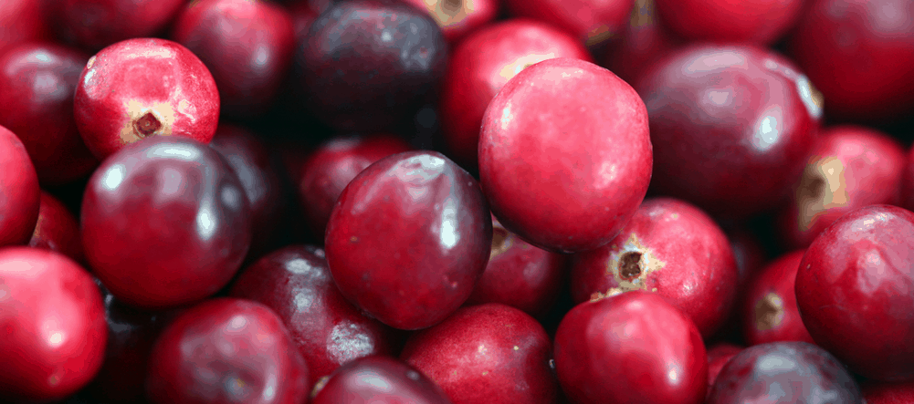 cranberry for prostatitis health