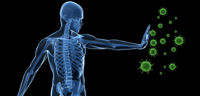 immunity prostatitis