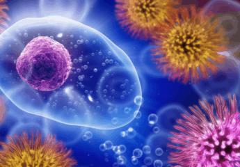 viruses and fungi Prostate cancer treatment attacks stem cells