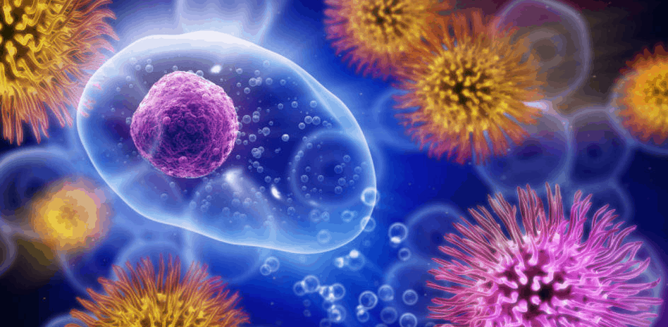 New Prostate Cancer Treatment Attacks Stem Cells