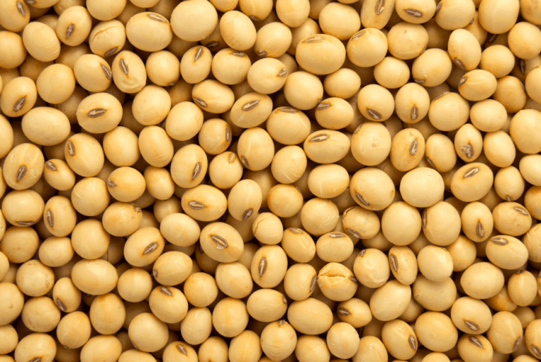 worst foods for men what's wrong and right with soy