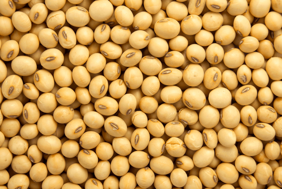 Is Soy Healthy For Men?