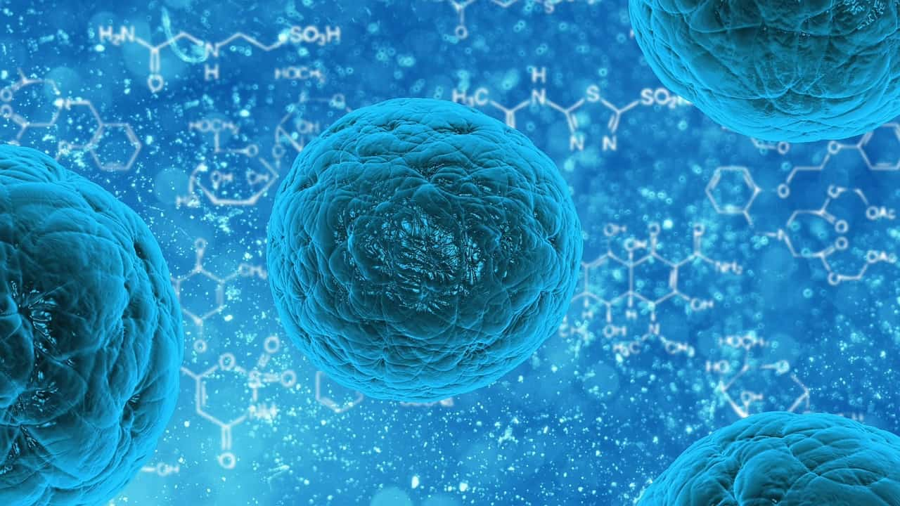 Stem cell therapy for Peyronie's disease