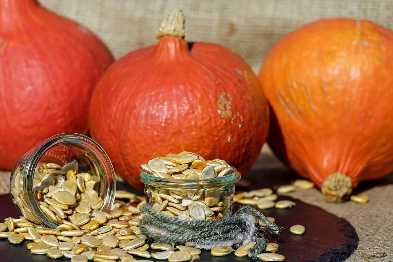 Treating Prostatitis with Pumpkin Seed Oil