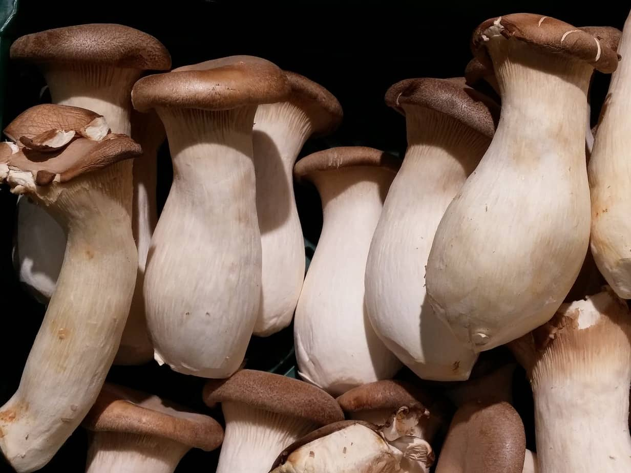 Can eating mushrooms lower prostate cancer risk